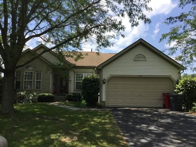 521 Ashton Woods Drive, Ashville, OH 43103 (MLS #221028266) :: The Holden Agency