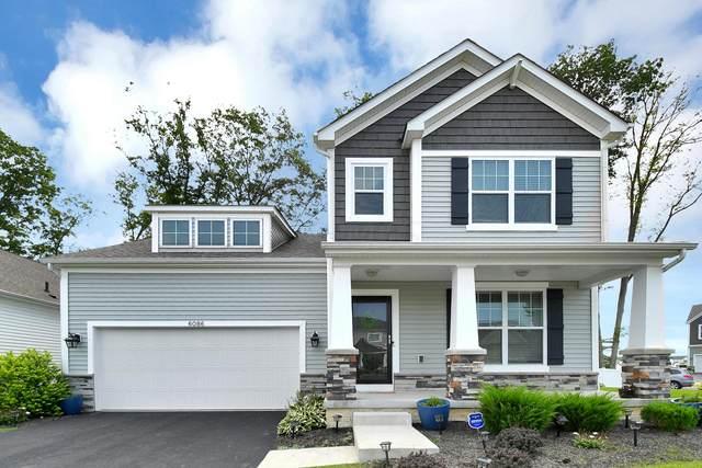 6086 Bradwood Drive, Westerville, OH 43081 (MLS #221028307) :: Sam Miller Team