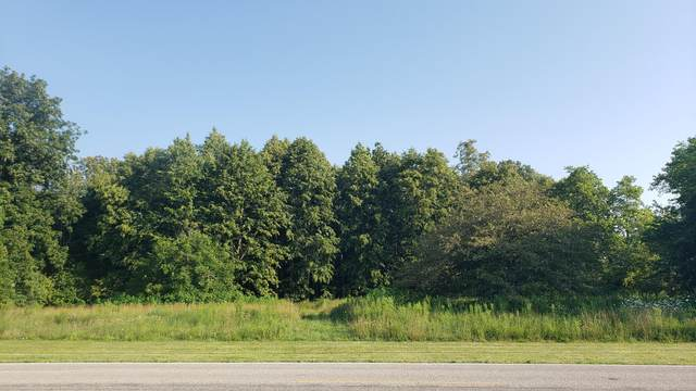 0 Boundary Road, Richwood, OH 43344 (MLS #221028343) :: LifePoint Real Estate