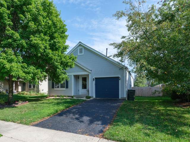 3358 Whitfield Drive, Reynoldsburg, OH 43068 (MLS #221028394) :: The Holden Agency