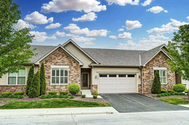 3664 Foresta Grand Drive, Powell, OH 43065 (MLS #221028561) :: The Raines Group