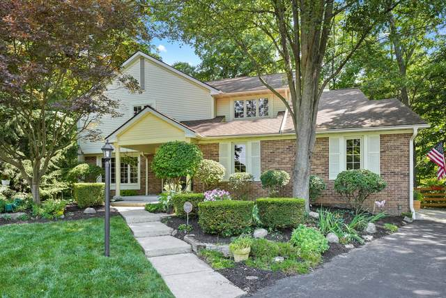 8134 Beech Court NW, Canal Winchester, OH 43110 (MLS #221028974) :: Exp Realty