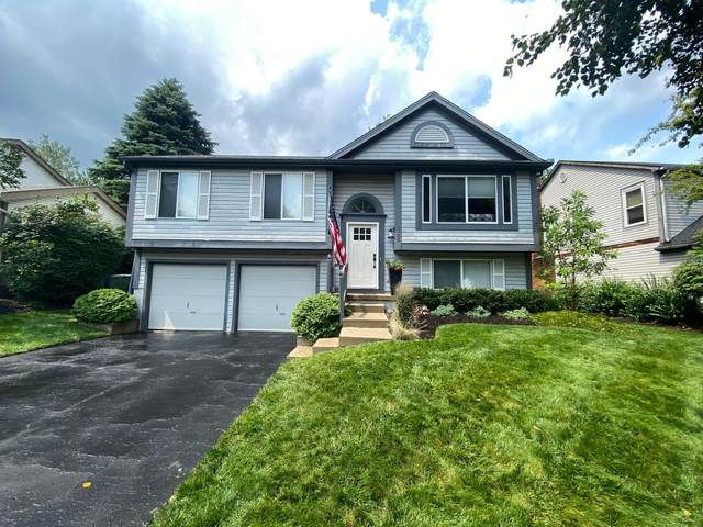 3900 Pinto Court, Columbus, OH 43221 (MLS #221029052) :: 3 Degrees Realty