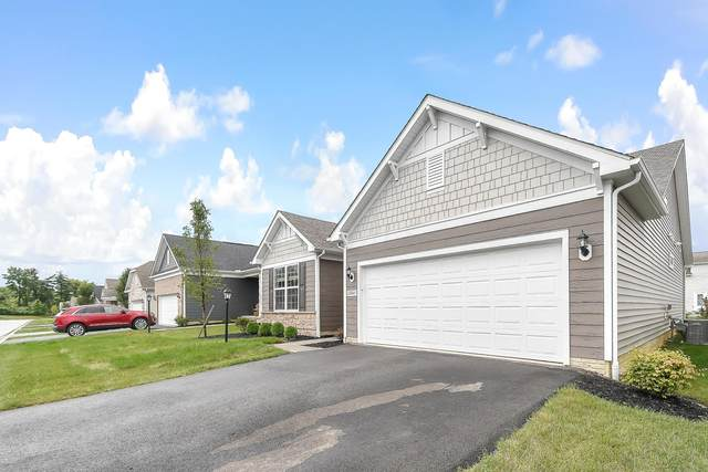 12245 Rooster Tail Drive, Pickerington, OH 43147 (MLS #221029060) :: Signature Real Estate