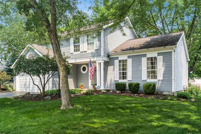 5252 Chaps Court, Columbus, OH 43221 (MLS #221029152) :: 3 Degrees Realty