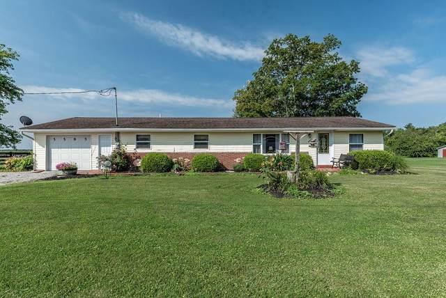5585 Johnstown-Alexandria Road, Johnstown, OH 43031 (MLS #221029403) :: Bella Realty Group