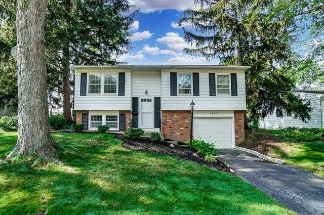 3445 Brazzaville Road, Westerville, OH 43081 (MLS #221029591) :: Core Ohio Realty Advisors