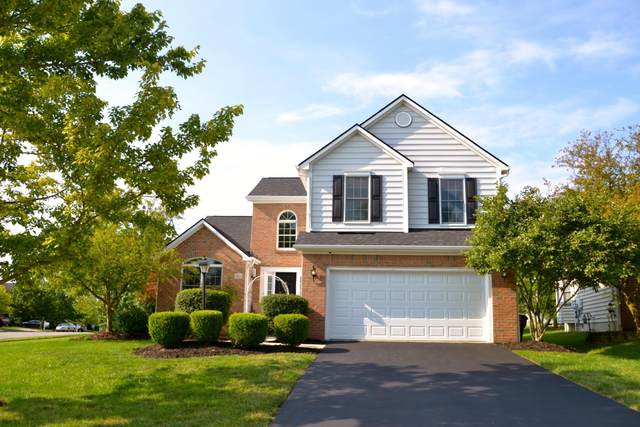7236 Trillium Drive, Lewis Center, OH 43035 (MLS #221029939) :: The Gale Group