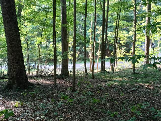 0 Highland Hills Drive Lot 304, Howard, OH 43028 (MLS #221030002) :: Core Ohio Realty Advisors
