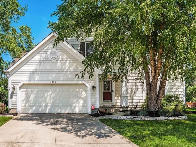 8350 Oak Creek Drive, Lewis Center, OH 43035 (MLS #221030201) :: LifePoint Real Estate