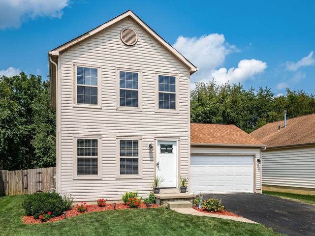 8178 Chapel Stone Road, Blacklick, OH 43004 (MLS #221030805) :: Signature Real Estate