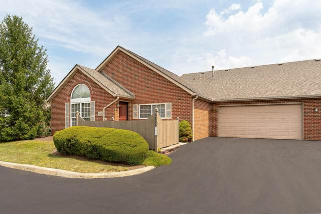 6826 Winrock Drive, New Albany, OH 43054 (MLS #221030815) :: Exp Realty
