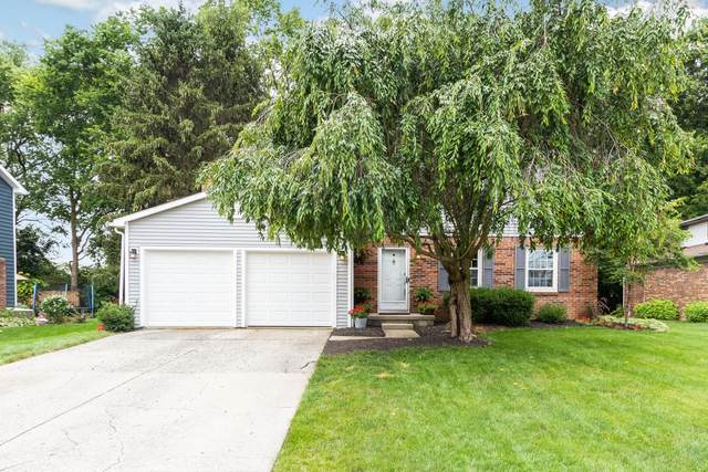 3897 Driscoll Court, Dublin, OH 43016 (MLS #221030898) :: The Gale Group
