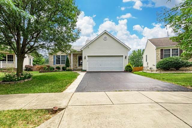 5801 Katara Drive, Galloway, OH 43119 (MLS #221031445) :: Signature Real Estate