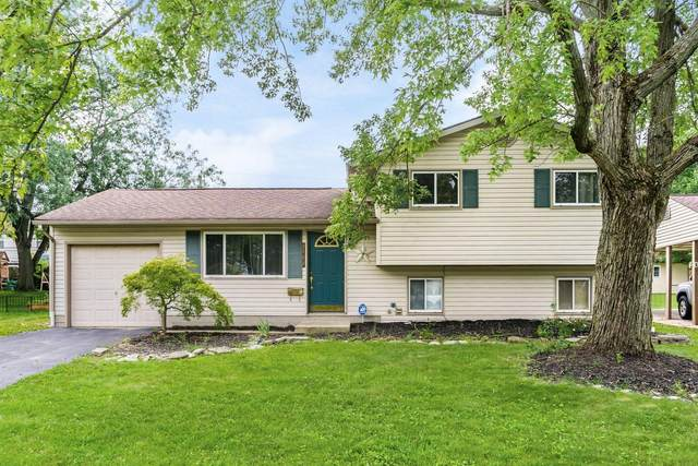 4539 Paxton Drive S, Hilliard, OH 43026 (MLS #221031496) :: ERA Real Solutions Realty
