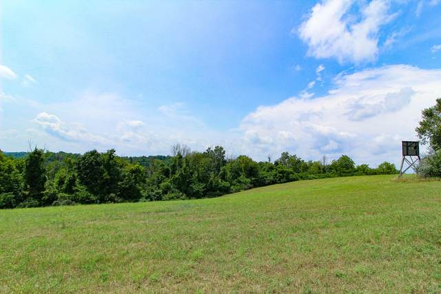 0 Parry Hollow Road, Caldwell, OH 43724 (MLS #221031996) :: Exp Realty