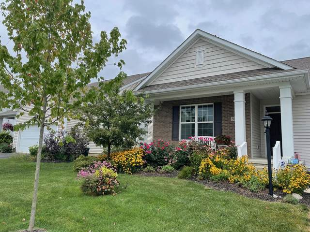 504 Saffron Drive, Sunbury, OH 43074 (MLS #221032108) :: RE/MAX ONE