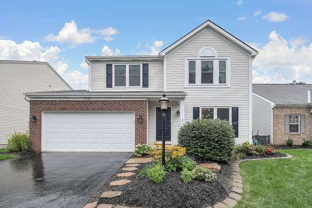 5584 Covington Meadows Drive, Westerville, OH 43082 (MLS #221032172) :: Signature Real Estate