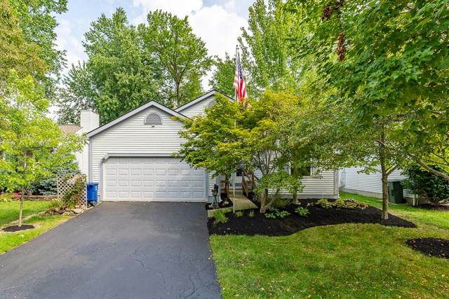 658 Arden Street, Lewis Center, OH 43035 (MLS #221033439) :: ERA Real Solutions Realty