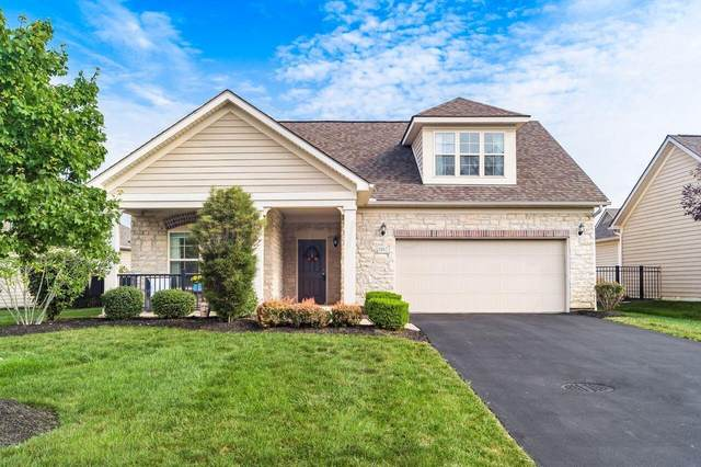 1082 Little Bear Loop, Lewis Center, OH 43035 (MLS #221033470) :: The Gale Group