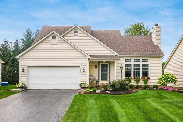 5862 Pine Wild Drive, Westerville, OH 43082 (MLS #221033510) :: The Holden Agency