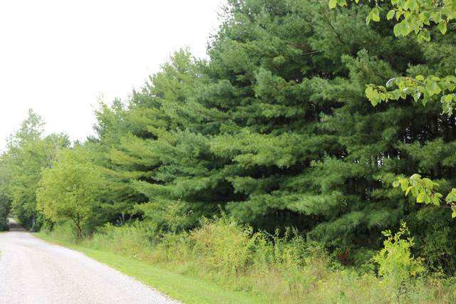 3114 S County Line Road, Johnstown, OH 43031 (MLS #221033524) :: Exp Realty