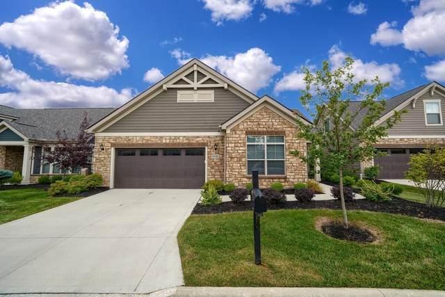 10542 Elderberry Drive, Plain City, OH 43064 (MLS #221033532) :: Sandy with Perfect Home Ohio