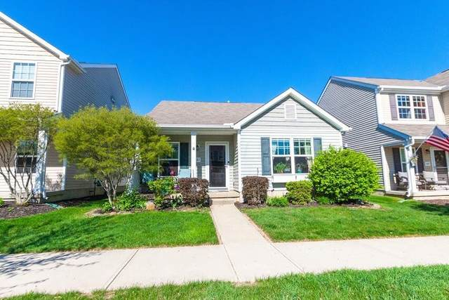 5683 Marshfield Drive, Westerville, OH 43081 (MLS #221033975) :: RE/MAX Metro Plus