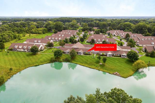6645 Henschen Circle, Westerville, OH 43082 (MLS #221034132) :: Exp Realty