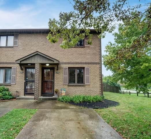 1539 Park Place Drive, Westerville, OH 43081 (MLS #221034383) :: Ackermann Team