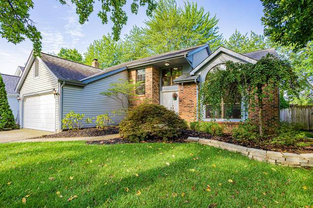 8027 Storrow Drive, Westerville, OH 43081 (MLS #221034542) :: ERA Real Solutions Realty