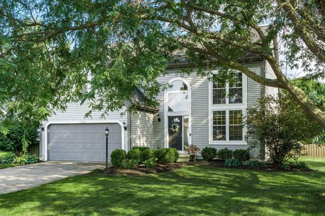 6940 Hillegas Farm Drive, Westerville, OH 43082 (MLS #221034555) :: Simply Better Realty