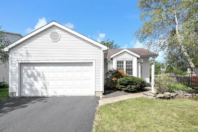 3021 Bismark Drive, Hilliard, OH 43026 (MLS #221034758) :: The Holden Agency