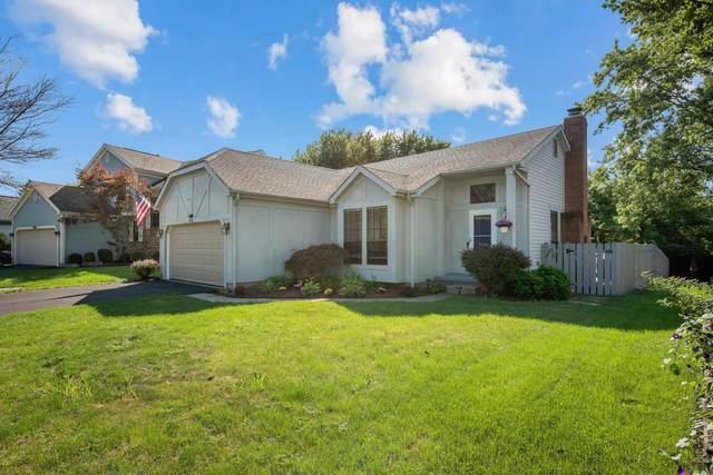 2976 Stone Mountain Drive, Pickerington, OH 43147 (MLS #221034883) :: Exp Realty