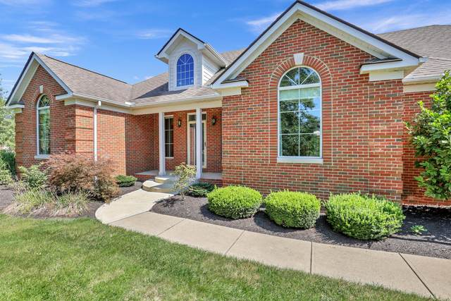 8686 Springflower Road, Pickerington, OH 43147 (MLS #221035009) :: Exp Realty