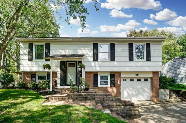 144 Fairdale Avenue, Westerville, OH 43081 (MLS #221035415) :: Greg & Desiree Goodrich | Brokered by Exp