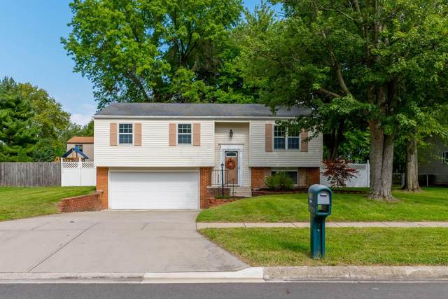 545 Pickerington Hills Drive, Pickerington, OH 43147 (MLS #221035425) :: Sandy with Perfect Home Ohio