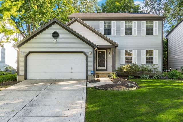 767 Suntree Drive, Westerville, OH 43081 (MLS #221035471) :: ERA Real Solutions Realty