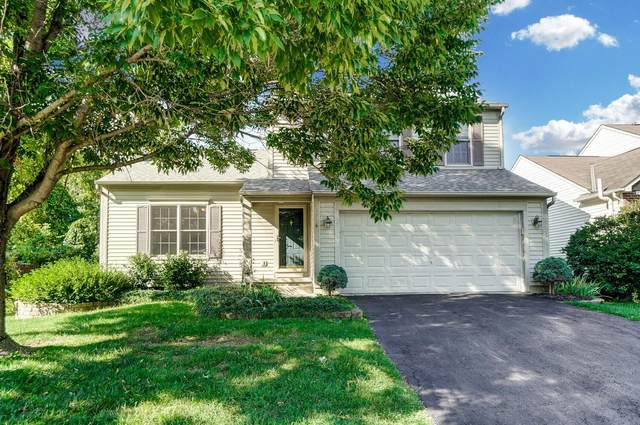 294 Holly Grove Road, Lewis Center, OH 43035 (MLS #221035485) :: ERA Real Solutions Realty