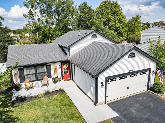 2346 Spring Cress Avenue, Grove City, OH 43123 (MLS #221035489) :: Exp Realty