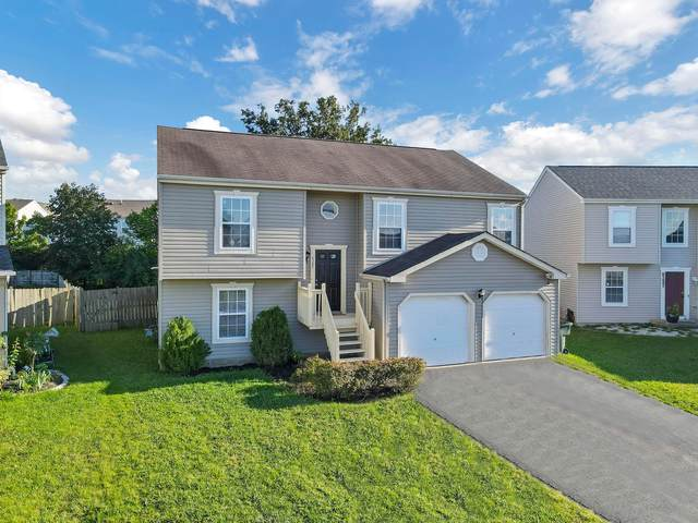 6289 Bellinger Drive, Galloway, OH 43119 (MLS #221035617) :: The Tobias Real Estate Group