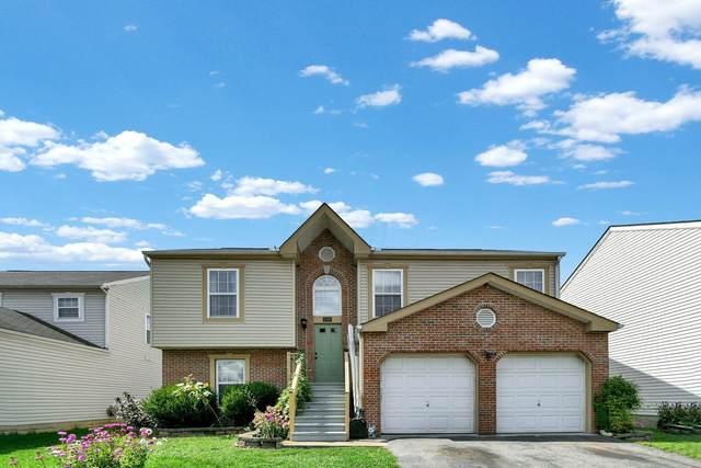 1399 Gray Meadow Drive, Columbus, OH 43223 (MLS #221035657) :: MORE Ohio