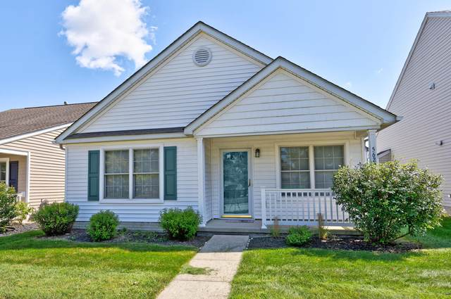 5620 Caledonia Drive, Westerville, OH 43081 (MLS #221035993) :: Exp Realty
