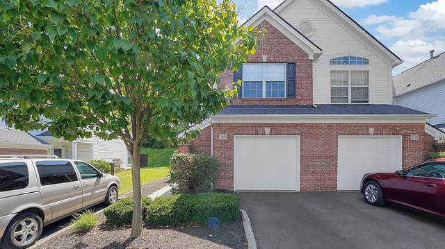 5801 Albany Grove, Westerville, OH 43081 (MLS #221036032) :: Exp Realty