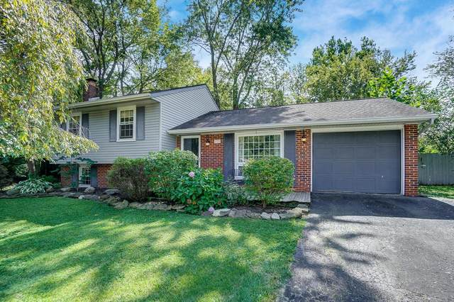 733 Mimosa Place, Gahanna, OH 43230 (MLS #221036052) :: Sandy with Perfect Home Ohio
