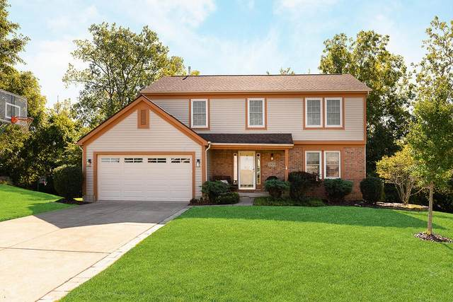 12420 Thoroughbred Drive, Pickerington, OH 43147 (MLS #221036075) :: Simply Better Realty