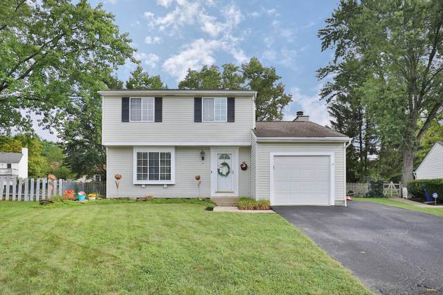 3748 Stirrup Court, Columbus, OH 43221 (MLS #221036153) :: Exp Realty