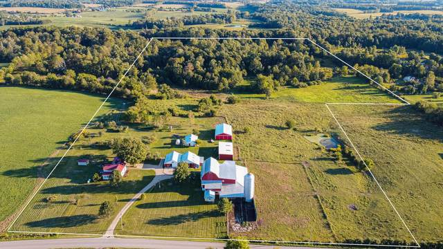 6266 County Road 109, Mount Gilead, OH 43338 (MLS #221036169) :: Exp Realty