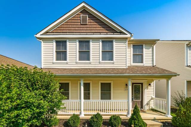 6038 Turnwood Drive, Westerville, OH 43081 (MLS #221036284) :: Exp Realty