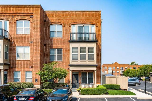 542 Quality Place, Columbus, OH 43215 (MLS #221036318) :: 3 Degrees Realty